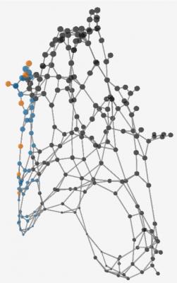 COTI DAGのデータ構造