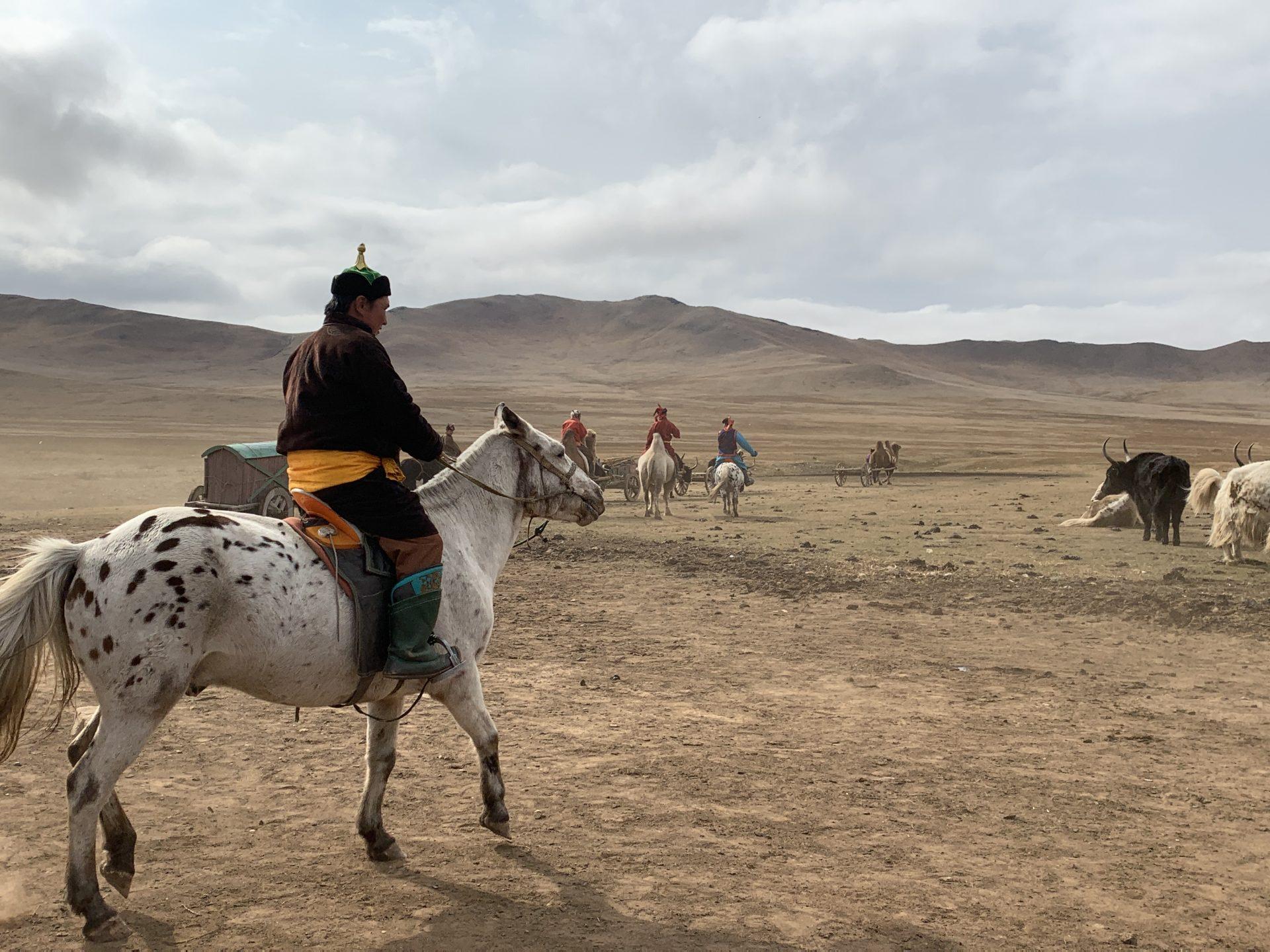 遊牧民と家畜